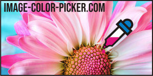 Image-Color-Picker.com